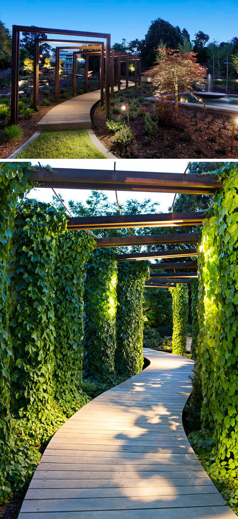 This modern garden pathway is surrounded by ivy covered arches and lit up by overhead lights.
