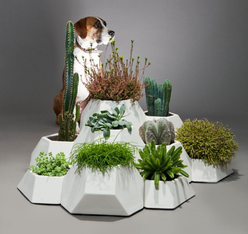 These modern modular ceramic planters let you customise your own desert garden and have been designed so that the white exterior holds and lets out excess water.