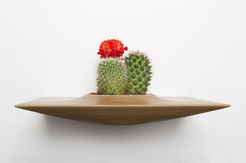 These modern wall mounted planters are another great way to bring desert plants into your home and add a touch of fun and decor to your walls.