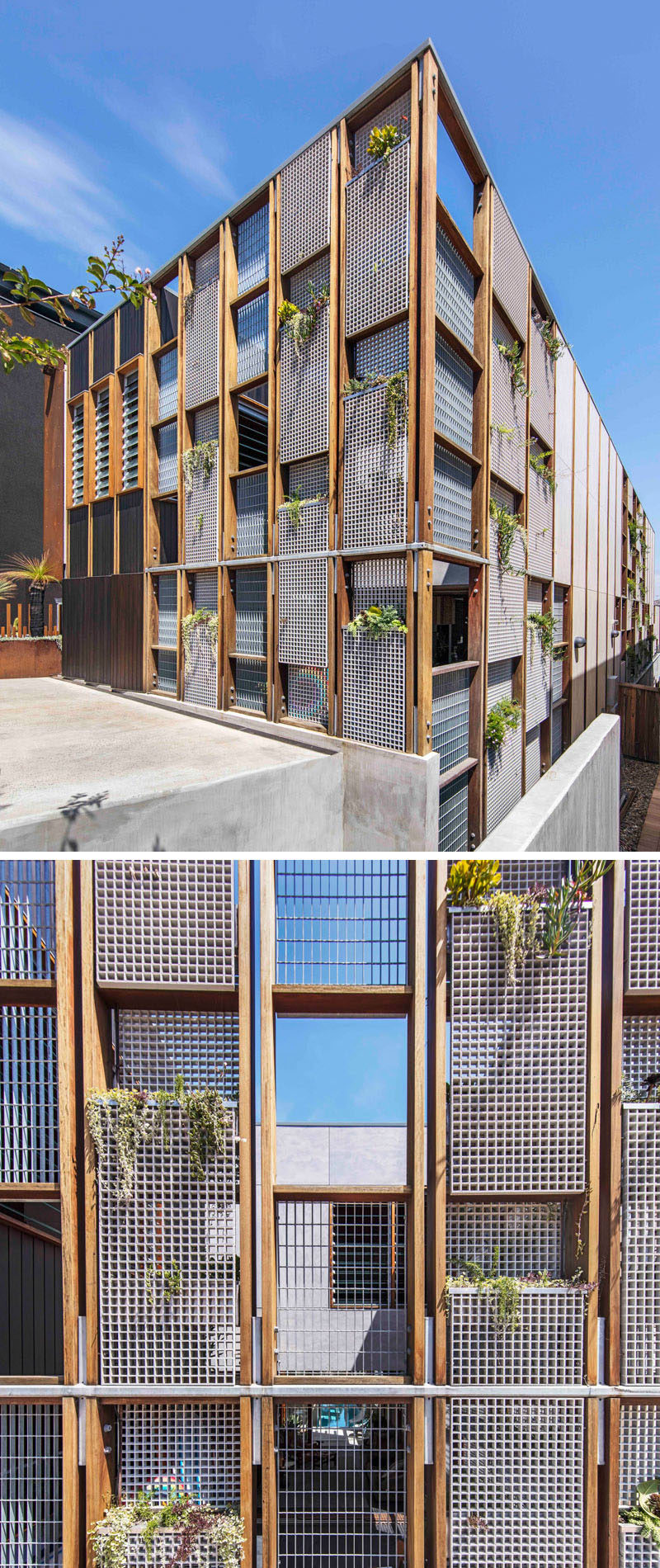 The facade of this modern house is made up of a wood grid with windows and perforated metal panels. These metal panels allow for a vertical garden to be grown over time.