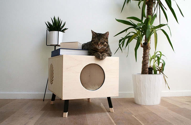 Amazing This Modern Cat Bed / Table Named Nest, Is Made From High End Plywood