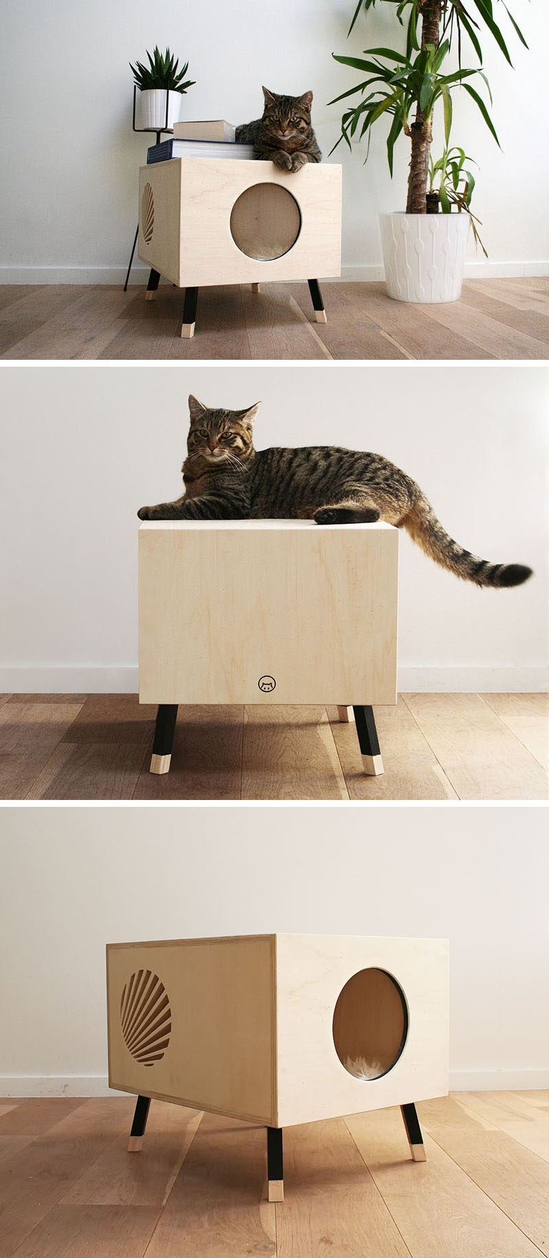 This Minimalist Modern Cat Bed Doubles As A Functional
