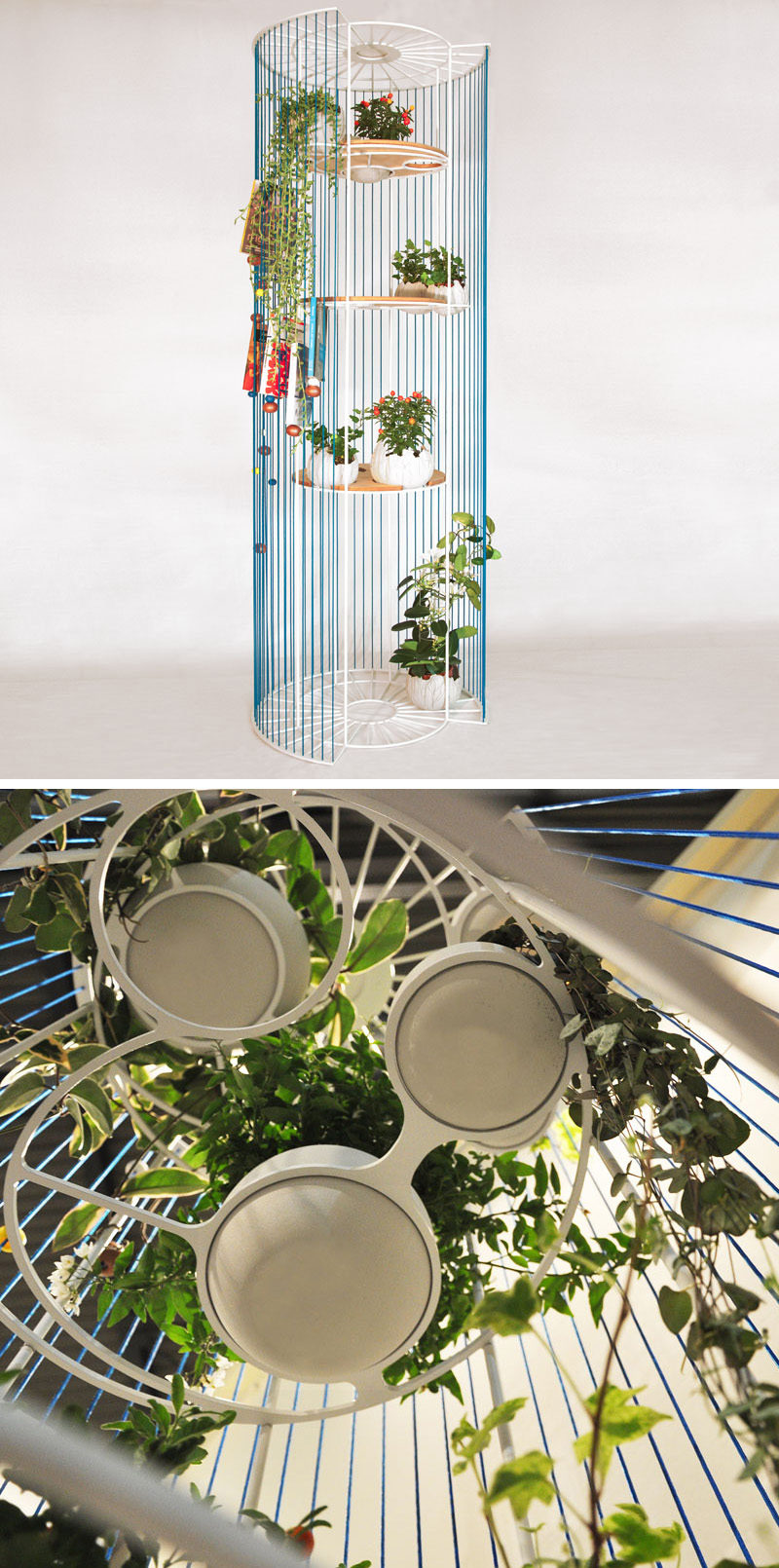 Designer Alessandra Meacci has created Bolina, a modern and multi-functional room divider, that doubles as a bookshelf and a place to display your plants.