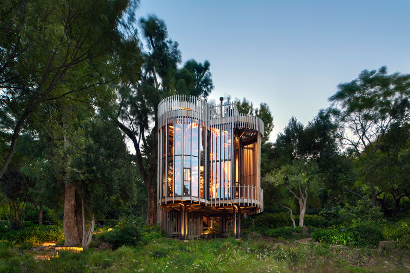 This Curvaceous Wooden House Sits Among The Trees