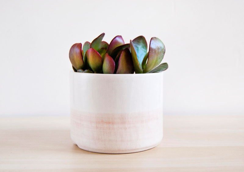 The perfect size for a small succulent, this blush pink ceramic planter will fit anywhere and is modern in design.