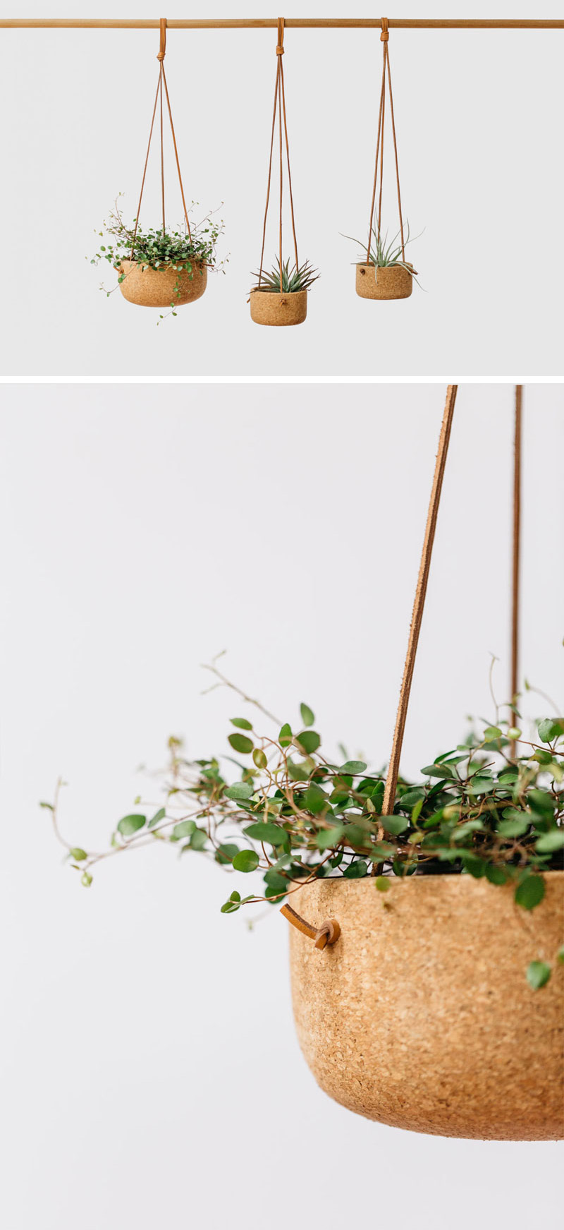 Vintage inspired, these modern hanging planters are made from hand-turned cork and natural leather lace. In variety of sizes, these strong pots are ideal for any plant.  #HangingPlanter #ModernPlanter #HomeDecor #Garden #Plants