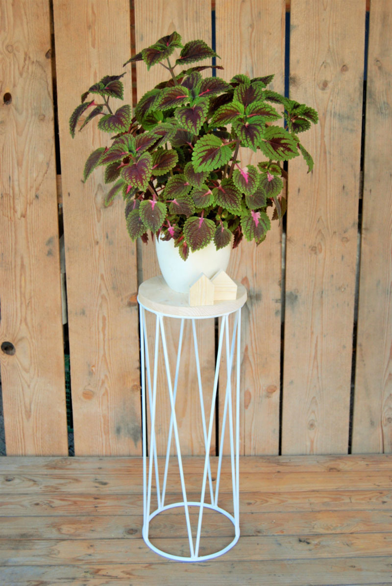 With an easy to move wood platform, a pot can be put on top of the modern plant stand, or placed directly into the light blue stand.