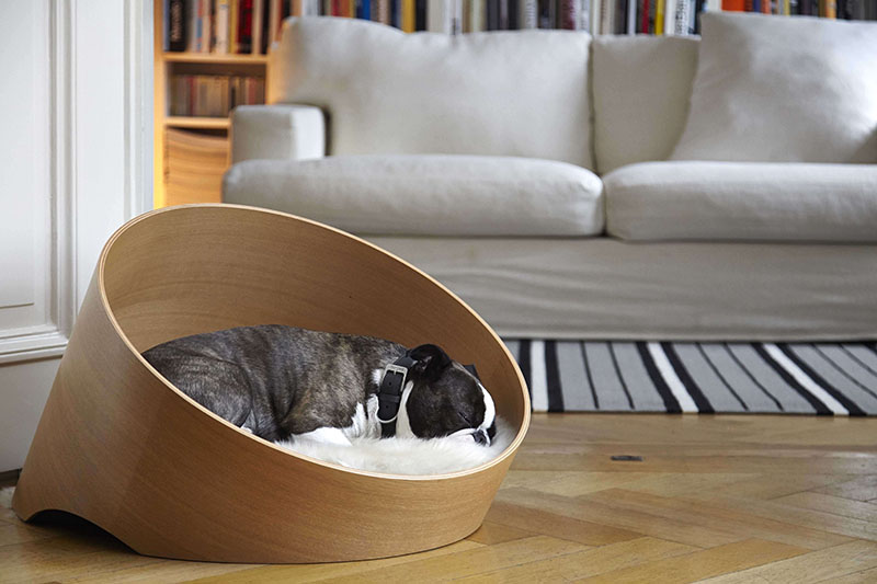 The Covo Dog Bed Keeps Pets Comfortable And Suits Any Modern