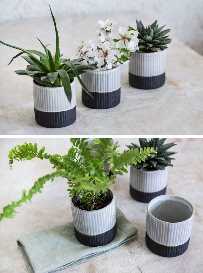 A ribbed texture on the exterior of these modern black and white ceramic planters gives them an organic look.