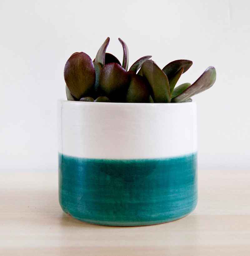 This modern white ceramic planter receives a pop of color, with the bottom half being blue. It's size makes it easy to fit into small spaces.