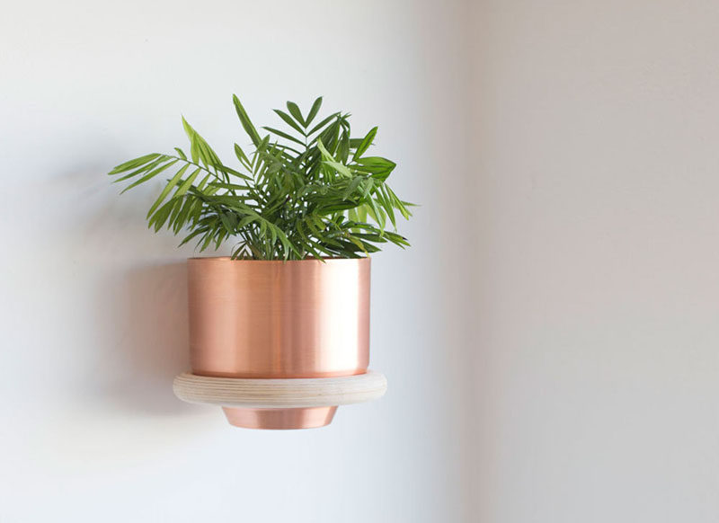 Andrew Deming and Rachel Gant of YIELD have designed a modern wood ring, wall mounted plant holder, that looks like it simply floats on the wall.