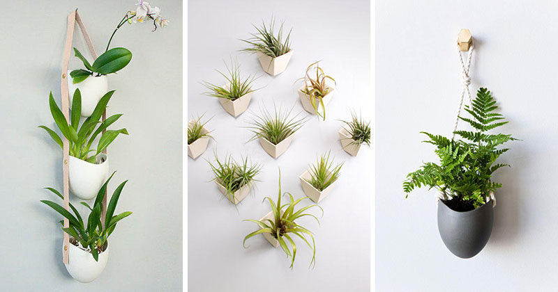 Light + Ladder Designs Delicate Porcelain Planters For Contemporary Walls