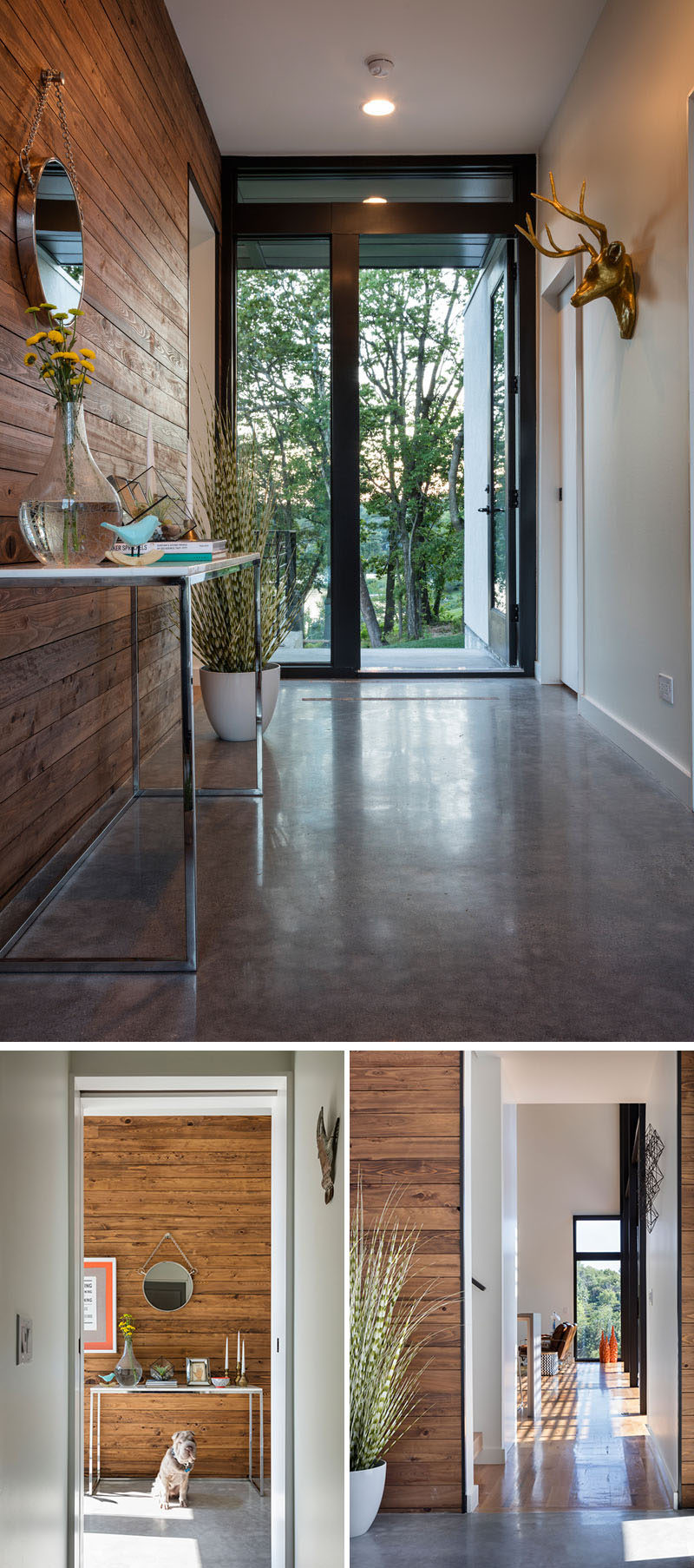 In this modern house, the entryway has a polished concrete floor and a wood accent wall that welcome you to the home.