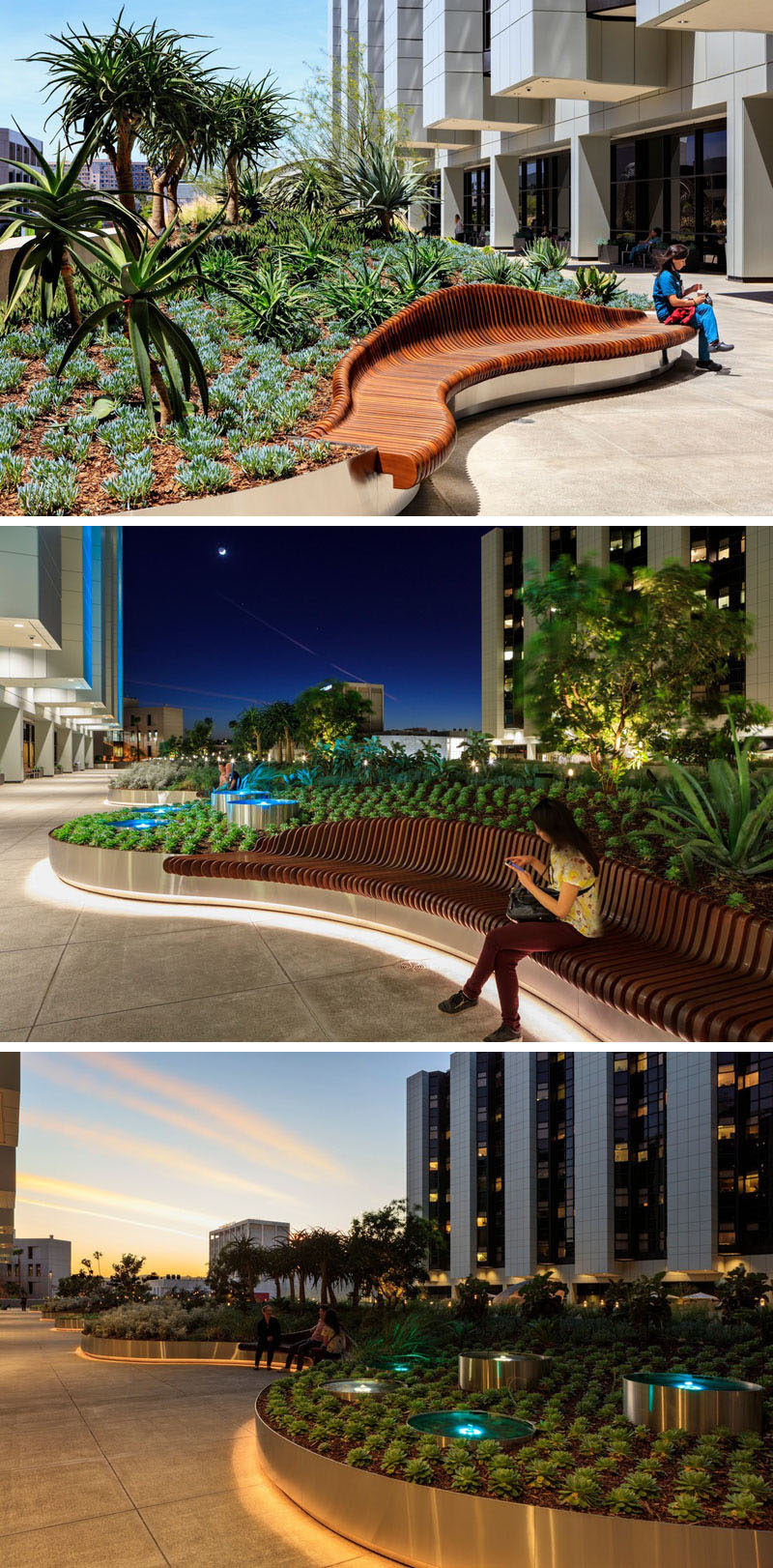 In this landscaped garden, curved wood benches mimic the shape of the planters and add a second sculptural design to the gardens. At night, hidden lighting lights up the edge of the planters.