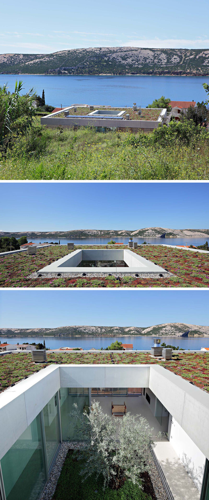 The flat roof of this modern house been planted with a green roof, featuring eight varieties of sedums of different colors and in-bloom seasons. #GreenRoof #FlatRoof #Atrium #Plants #Architecture #ModernArchitecture