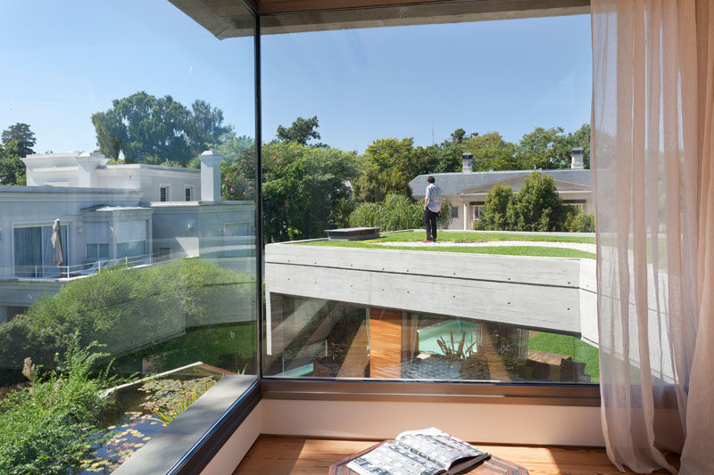 Floor-to-ceiling windows in this modern concrete house provide a view of the green roof on another part of the home. #Architecture #Windows #GreenRoof #ModernHouse