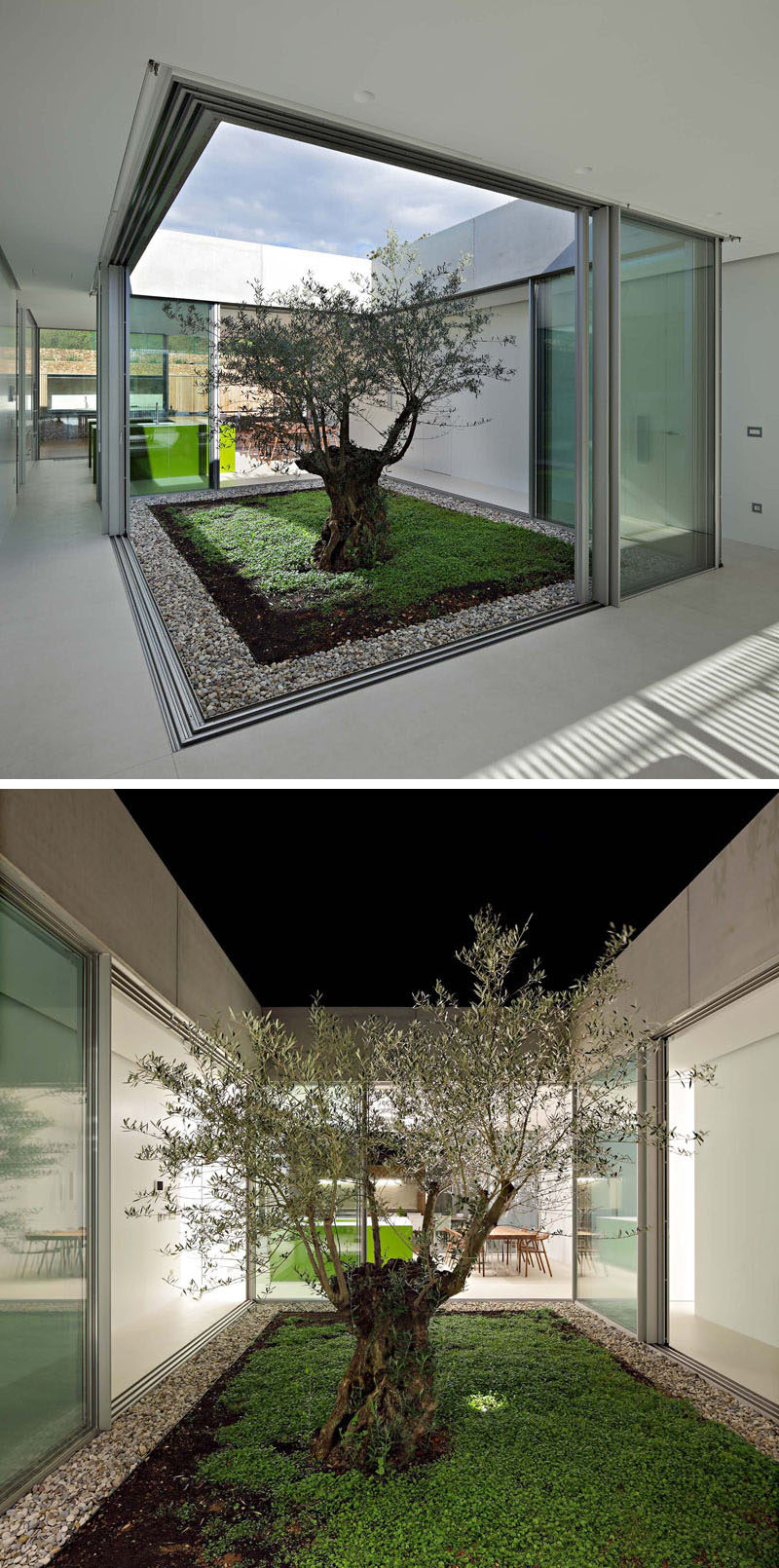 This modern home has a glass atrium with a single olive tree, that's the heart of the house. All of the different living areas of the home surround the atrium and it's a place where the boundary between the interior and exterior disappears. #Atrium #InteriorAtrium #ModernArchitecture
