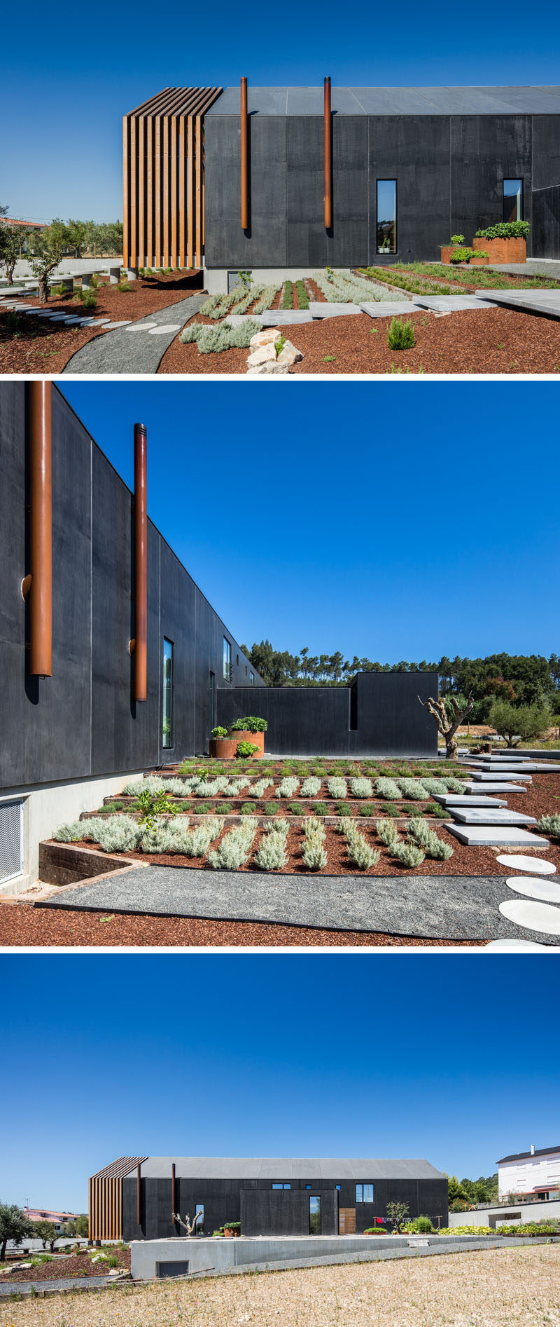 A path leads to the side of this modern house where there's a terraced landscaped garden with rows of plants. #Garden #ModernGarden #Landscaping