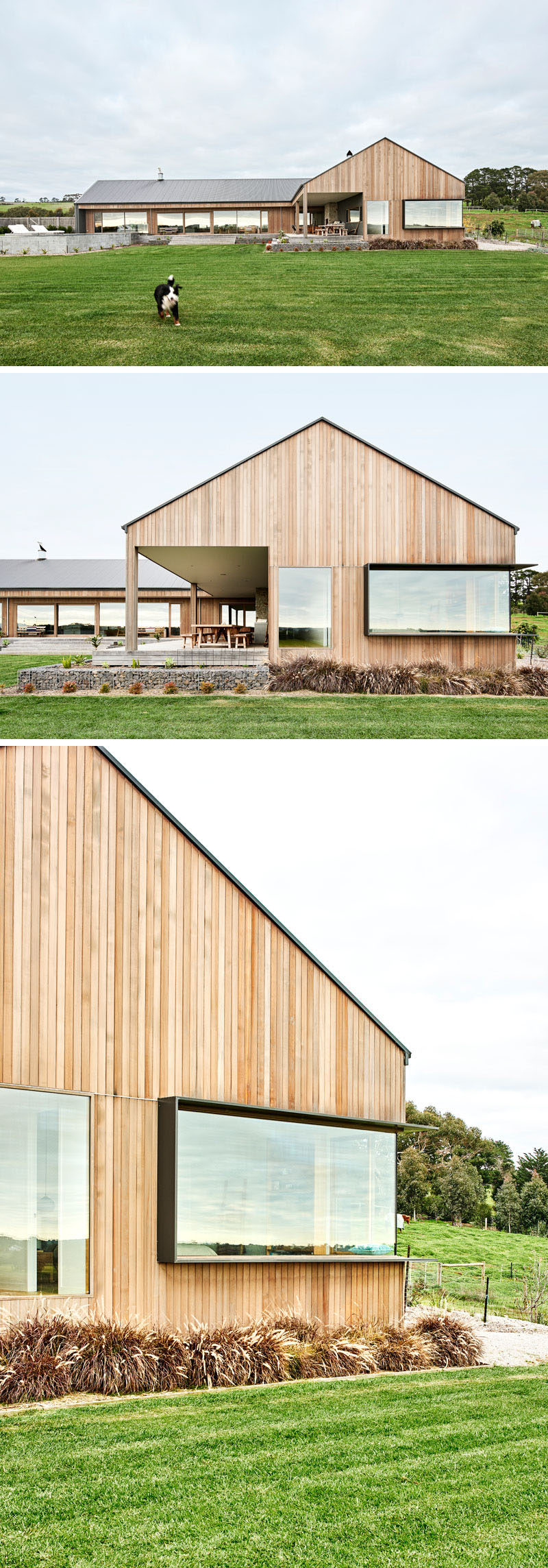 This modern ranch-inspired house has plenty of windows, including one that has a frame that protrudes out from the wood siding. #WoodSiding #Windows #ModernHouse #Architecture