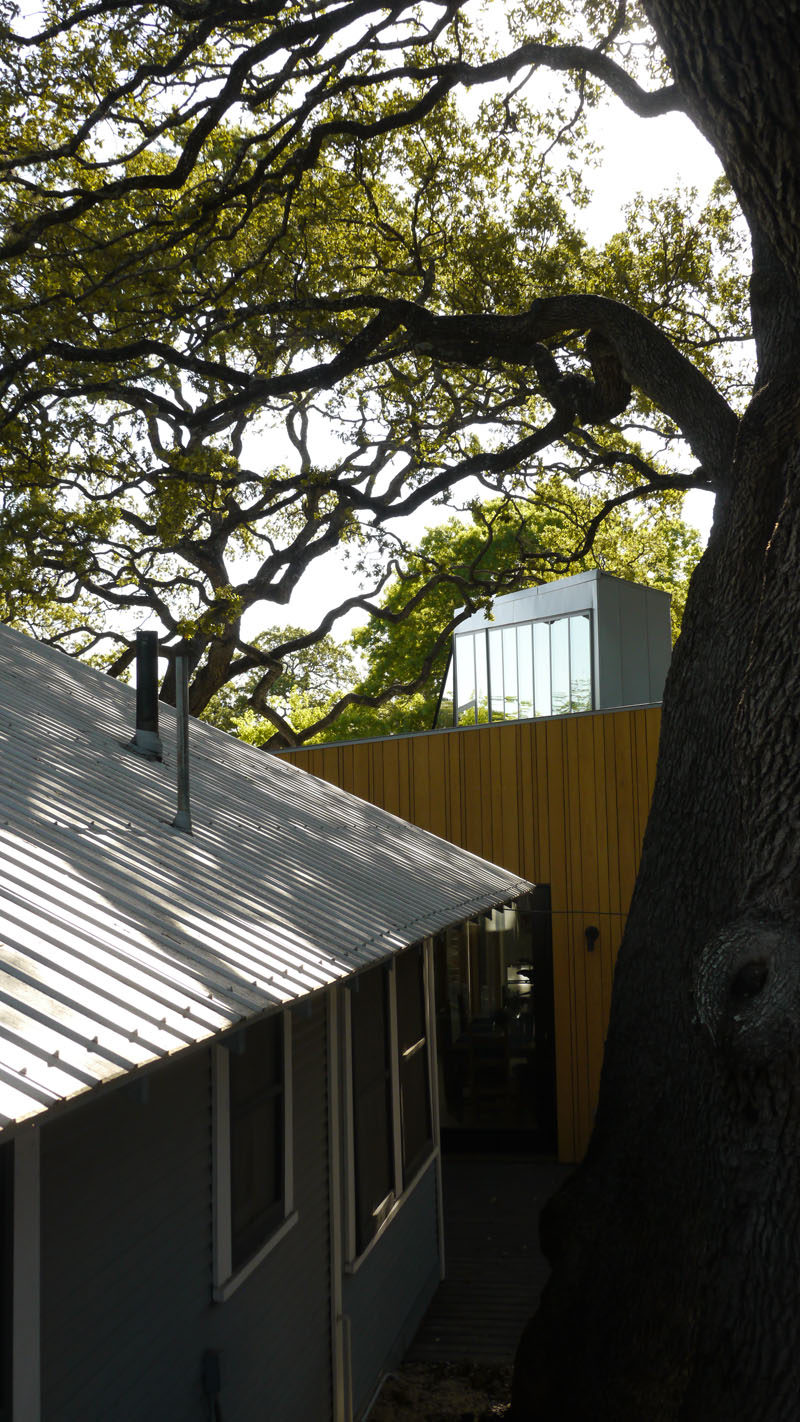Murray Legge Architecture have designed a modern addition to a 1920s bungalow in Central Austin, Texas, that wraps around an existing 150-year-old oak tree. #Architecture #ModernAddition #ModernArchitecture