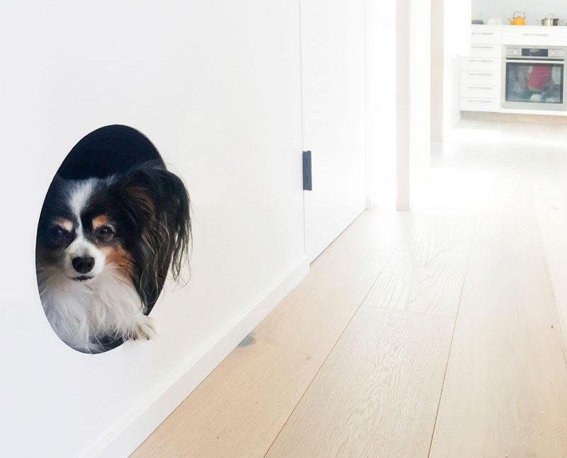 Built Dog Bed Was Created This Living Room Wall