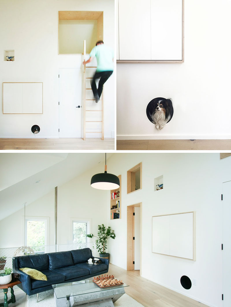 Terrific A Built In Dog Bed Was Created In This Living Room Wall Machost Co Dining Chair Design Ideas Machostcouk