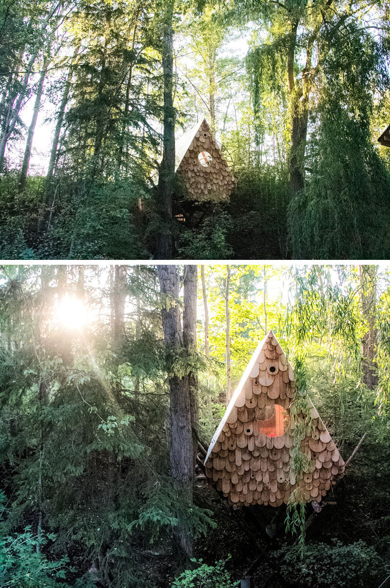 Studio North have designed the Birdhut, a treetop perch that sits within the tree canopy and can accommodate two people, and has a facade with twelve birdhouses. #Cabin #Hut #BirdHouse