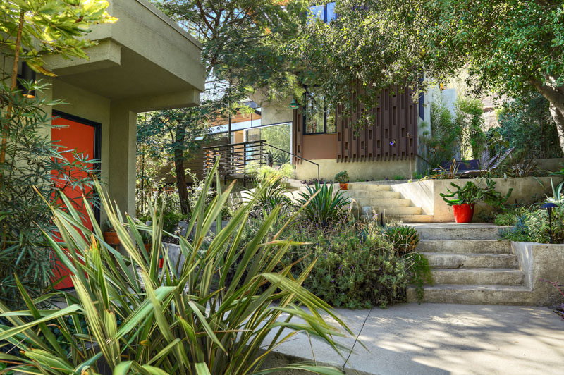 This contemporary house has concrete steps surrounded by landscaping that lead down to a guest house. #Landscaping #OutdoorStairs
