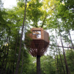 The ORIGIN Tree House Sits Within A Forest In France