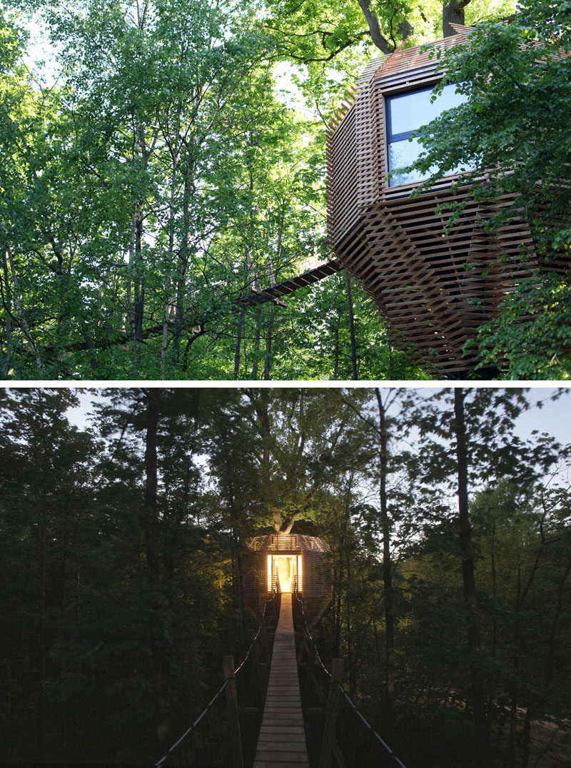 A wooden walkway, ten meters from the ground, leads you straight into the heart of this modern tree house. #ModernTreeHouse #TreeHouse
