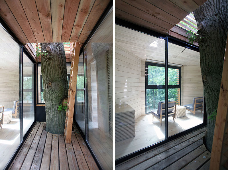 Upon arriving at this modern tree house, there's a small patio around the trunk that has the feeling of protection, much like an actual nest. Two large sliding glass doors provide access to the living area. #ModernTreeHouse #ModernCabin