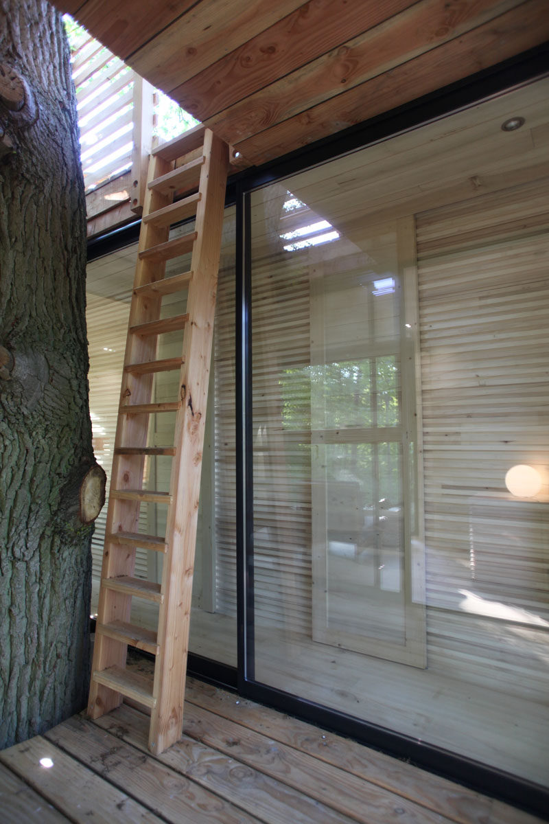 This modern tree house has a wooden ladder inviting guests to continue the ascent to a rooftop terrace. #TreeHouse #Architecture