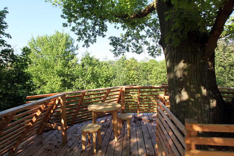 This modern tree house has a rooftop terrace with 360 ° panoramic views of the forest. #TreeHouse #Architecture