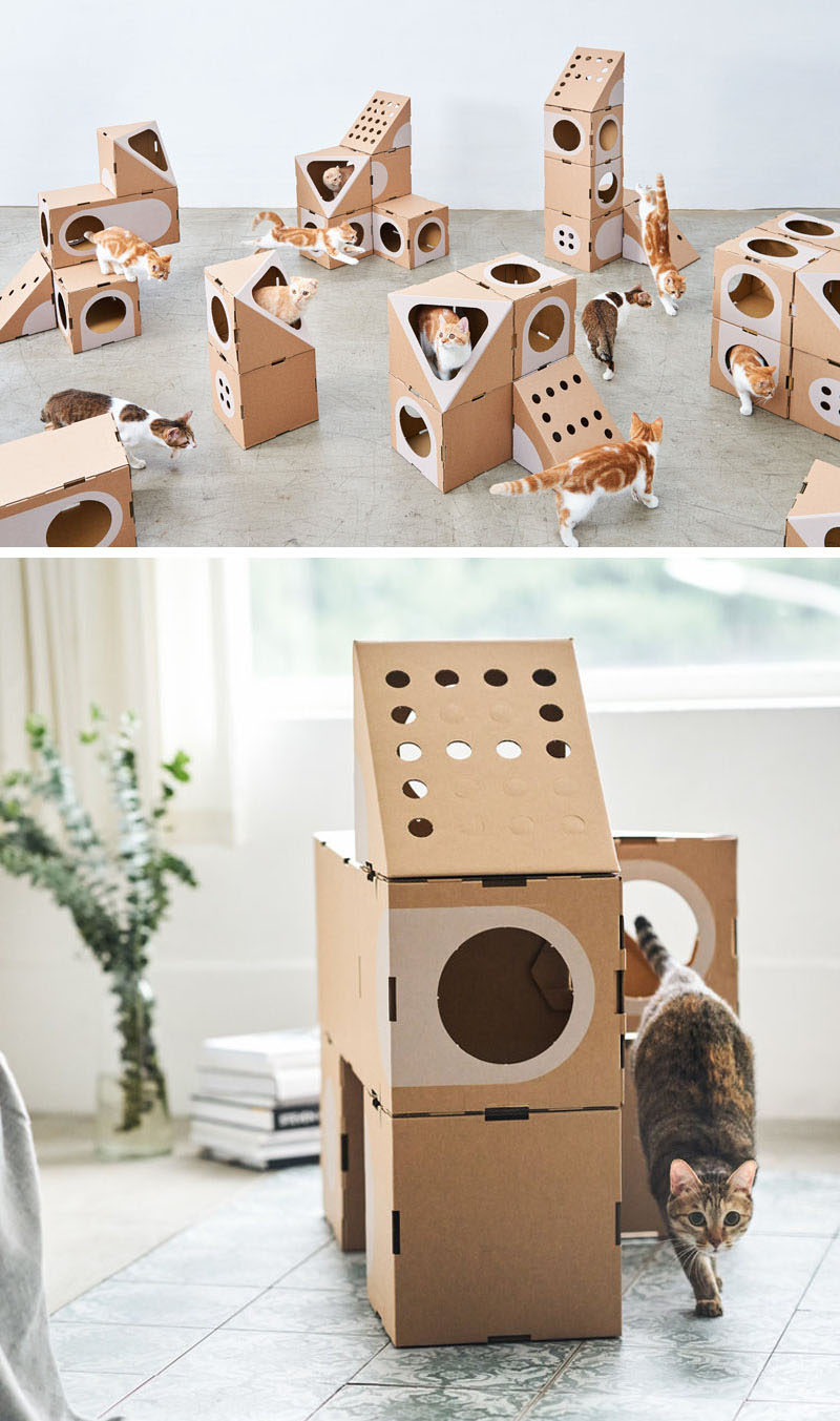 A Cat Thing Have Created A Modular Cardboard Furniture