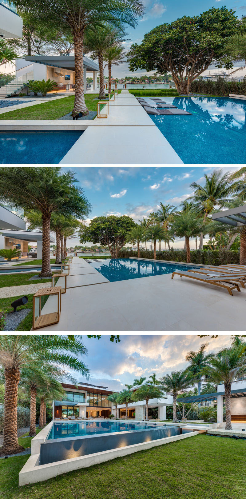 A backyard designed around a giant Banyan tree, has an over-sized infinity-edge pool, several reflecting ponds, and lounge seating.