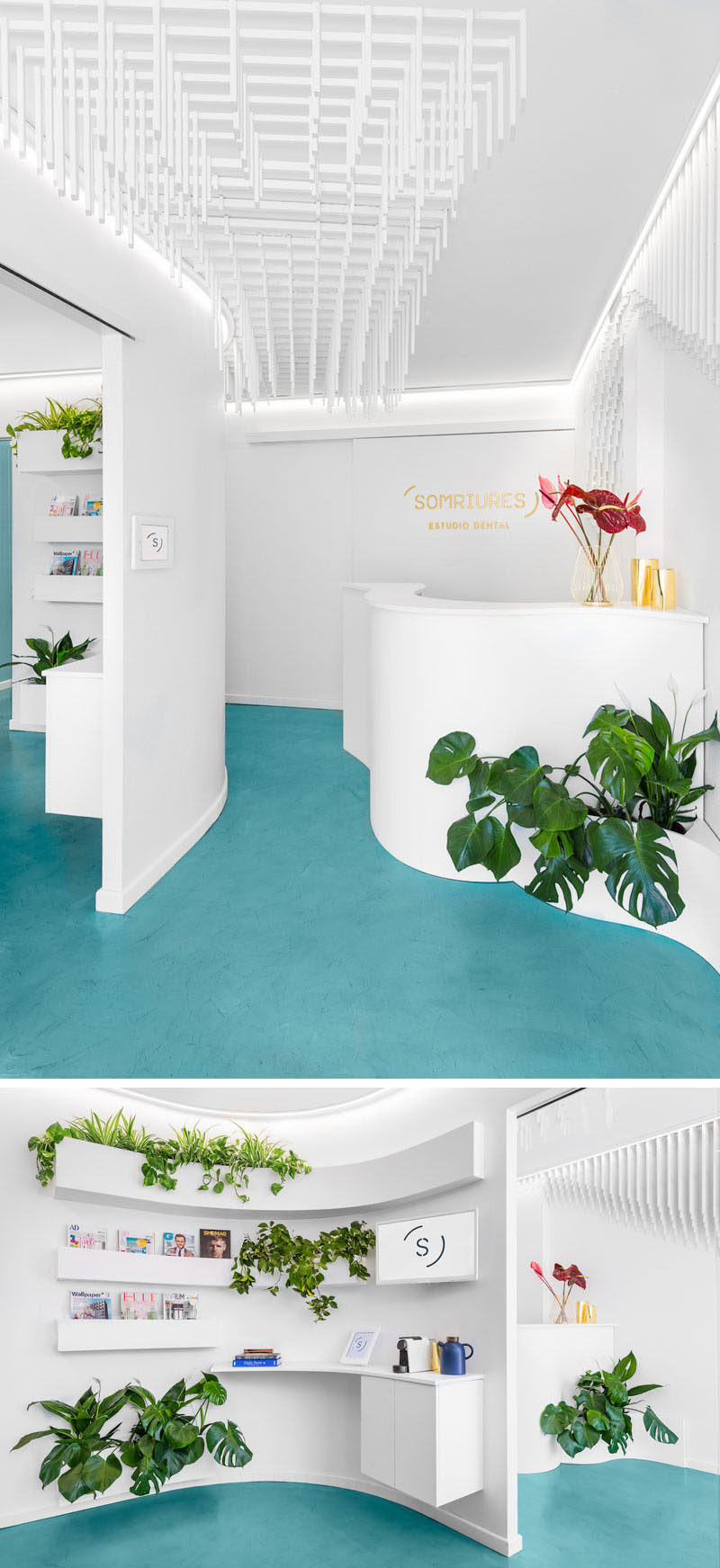 This modern dental clinic features a curved reception desk that greets visitors, while plants add a natural touch. There's a waiting room beside the reception area and white shelving wraps around the corner, creating a place to store reading materials. #InteriorDesign #ReceptionDesk #Dentist #Shelving