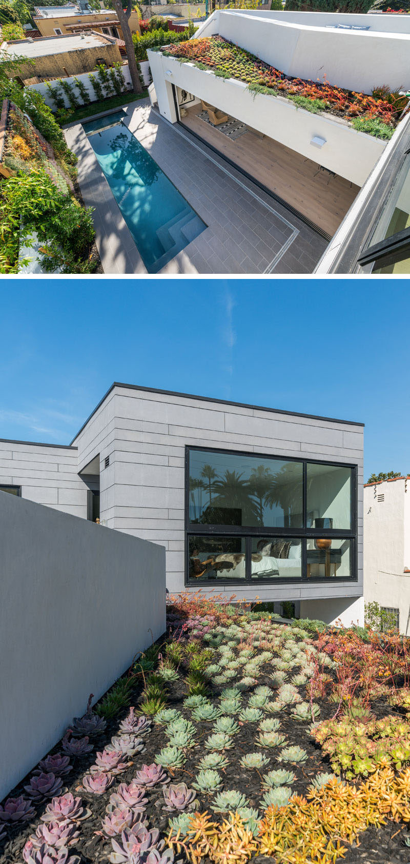 This modern house has a hidden green roof that's filled with succulents. #GreenRoof #Succulents