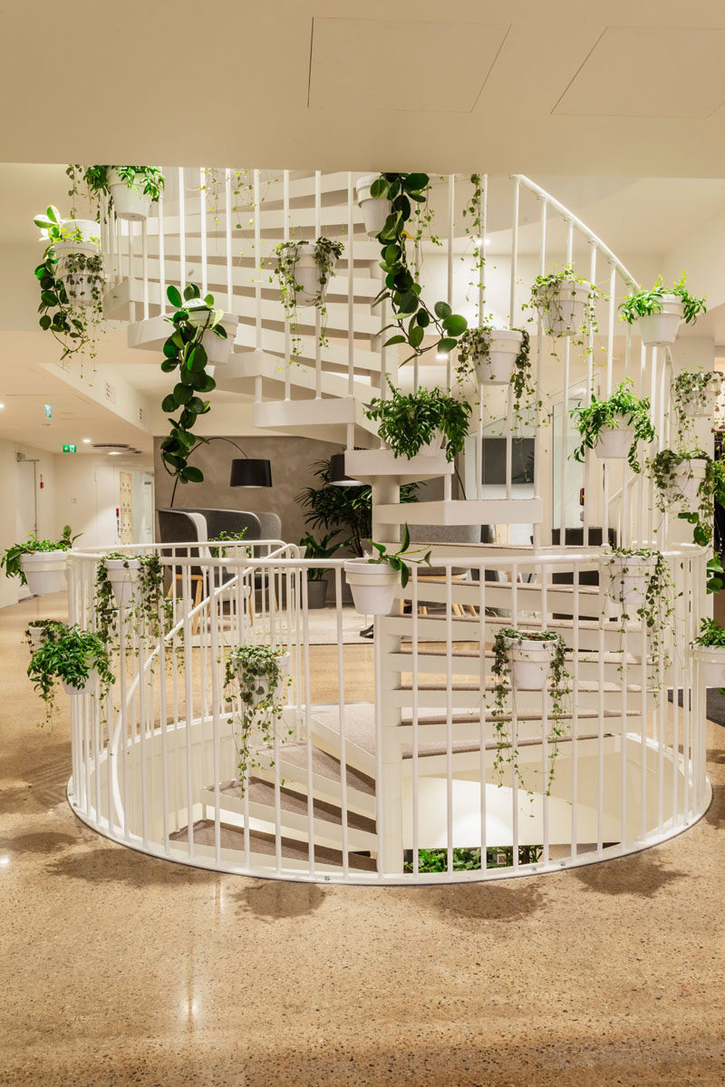 A white spiral staircase decorated with house plants connects the different floors of this modern office. #SpiralStairs #WhiteStairs #StairDesign