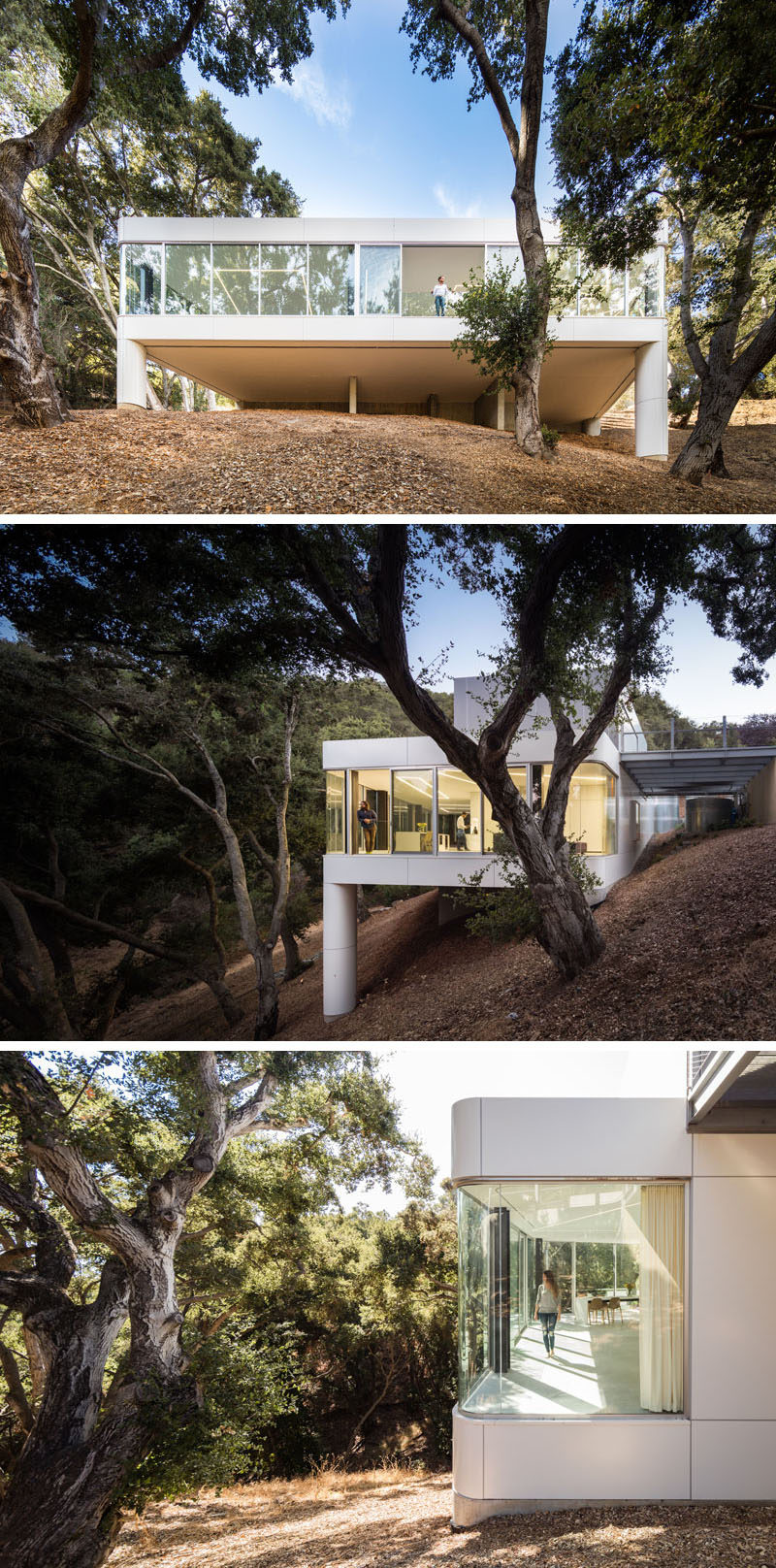 Craig Steely Architecture have designed a modern house in Cupertino, California, that faces a canopy of a dense oak grove in the foothills of the Santa Cruz Mountains. #ModernArchitecture #ModernHouse