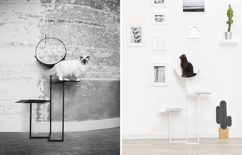 Meyou have designed a modern cat tree and a 'cactus' cat scratching tree. Click through to see more photos. #CatTree #CatFurniture #CatStand #ScratchingPost