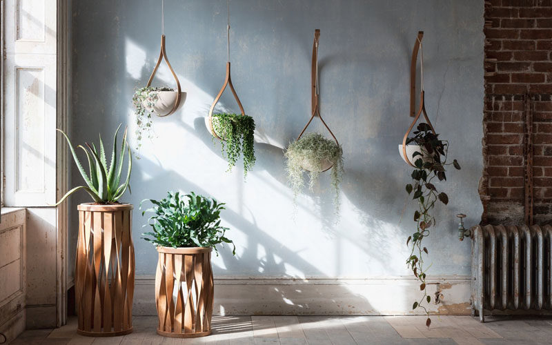 From his studios in Cornwall, England, designer Tom Raffield has created his new line of modern wood planters named 'The Green Range'. #ModernPlanter #Plants #HangingPlanter #PlantStand #Design