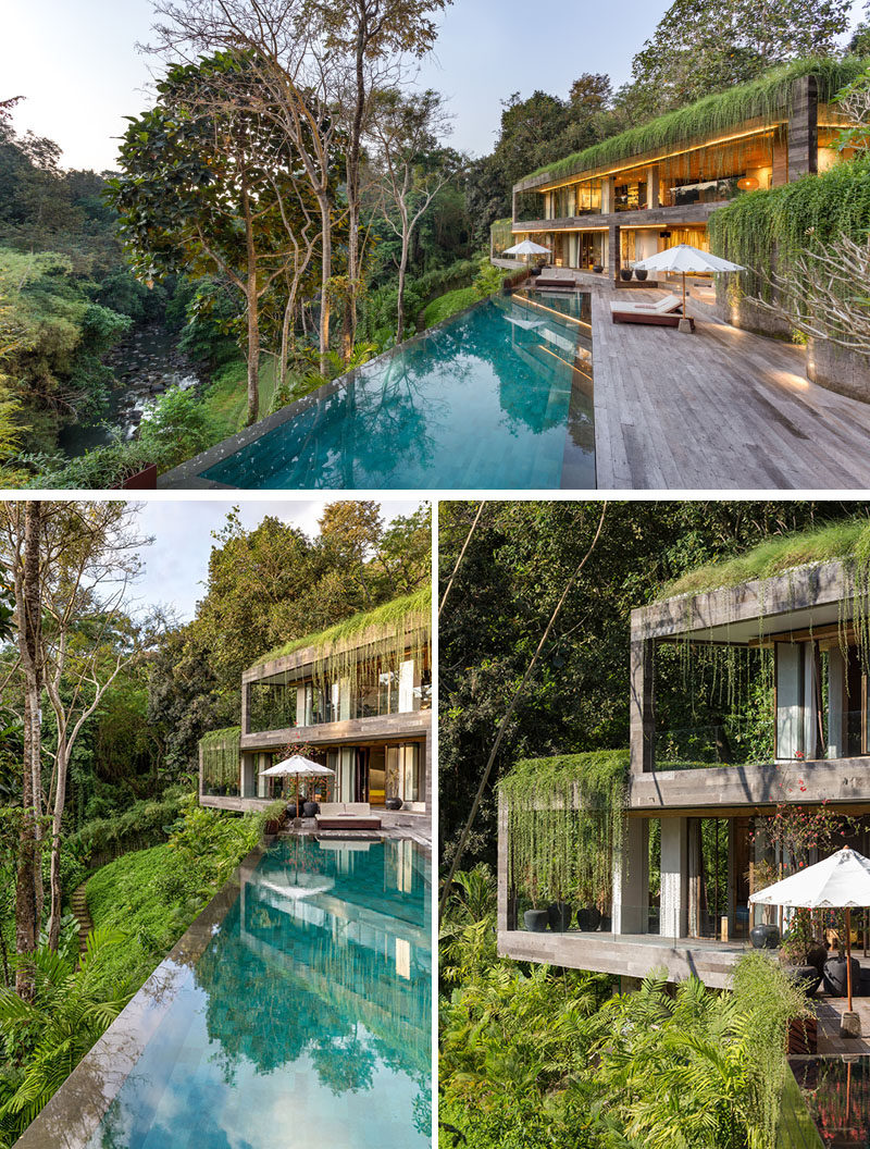 Constructed on an acre of land, overlooking a dense forest and a gentle river below, this modern villa sits on a steep contour with an 11-meter difference of level between the arrival area and the river that runs the western length of the property. #ModernHouse #Architecture #SwimmingPool