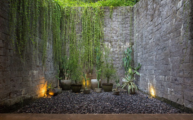 This private courtyard has lights to highlight the stone walls, while cacti add to the rock garden feel. #Courtyard #PrivateCourtyard #StoneWalls