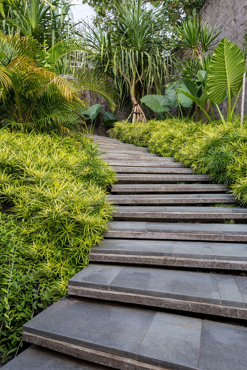 The luscious tropical landscape of this modern house becomes the backdrop for a calming retreat, where a stepped path surrounded by plants leads from the parking area down to the house. #Landscaping #OutdoorStairs #Garden #LandscapeDesign