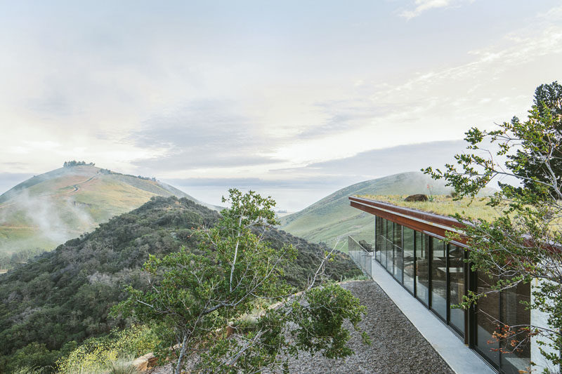 Nestled into a steep hillside, this modern guest house was designed with a low visual and environmental impact on the surrounding landscape, and it's disguised by having a low profile and a green roof. #GuestHouse #Architecture #GreenRoof