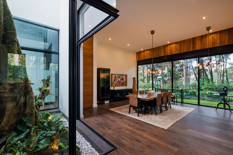 This modern house has a dining room with a wall of windows providing views of the backyard, while sliding doors open it to a lightwell with a tree. #DiningRoom #Interiors #Windows