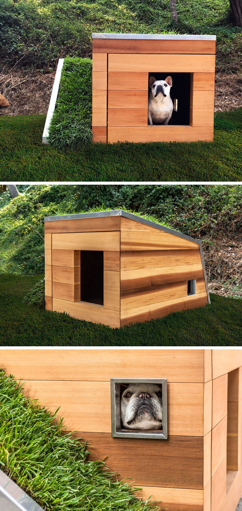 Studio Schicketanz have designed a modern Dog Dream House, that features wood construction, a green roof, storage for toys and snacks, a motion activated faucet, and a solar powered fan. #DogHouse #ModernDogHouse #Architecture #Design