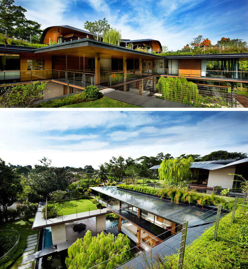 Green roofs and planters are featured on the upper level of the house, ensuring each section of this modern house has access to green space and a relaxing environment. #GreenRoof #Planters #Landscaping #Architecture