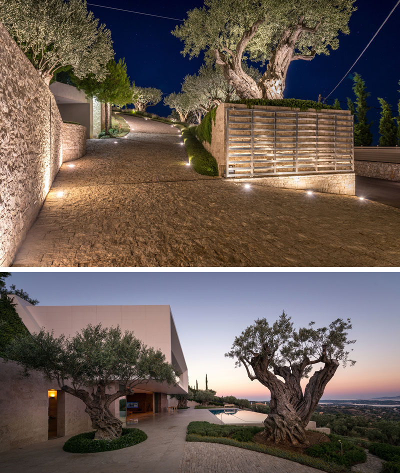 A steep stone driveway lined with trees leads from the street up to a modern house. #Driveway #ModernLandscaping