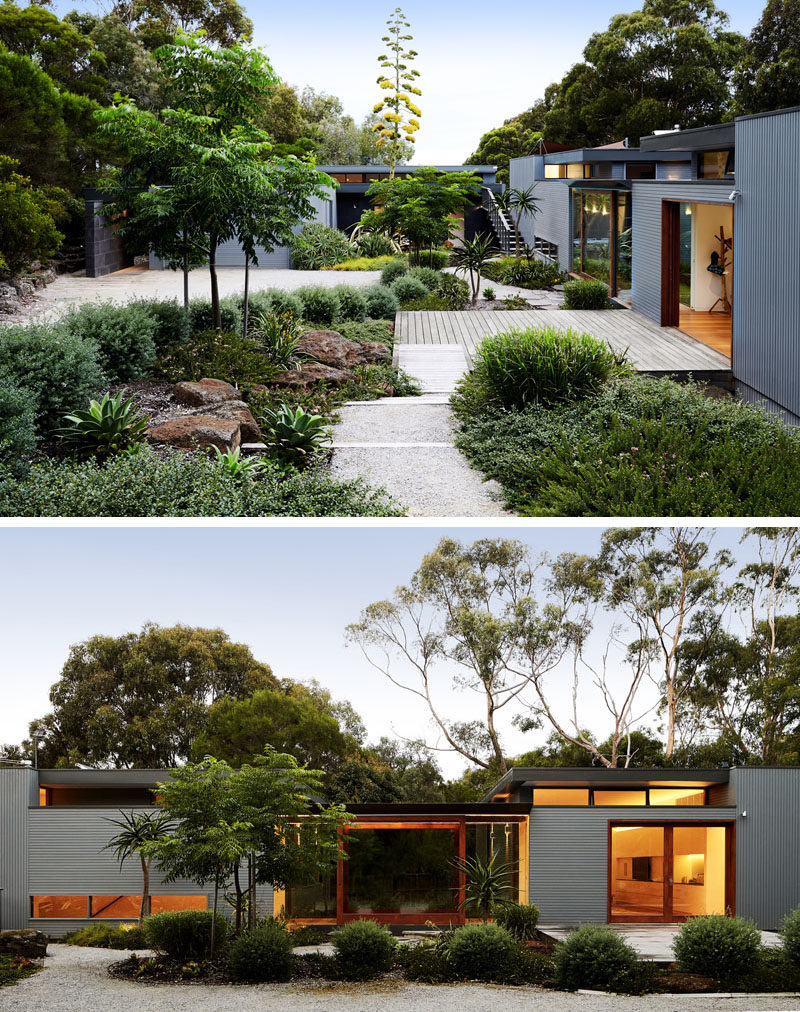 This modern house has a lush courtyard that guides visitors to the front door. #Landscaping #Courtyard
